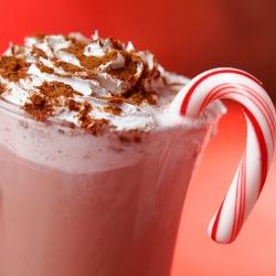 hot cocoa nevada city
